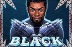 Играть в Игровой автомат Black Rider